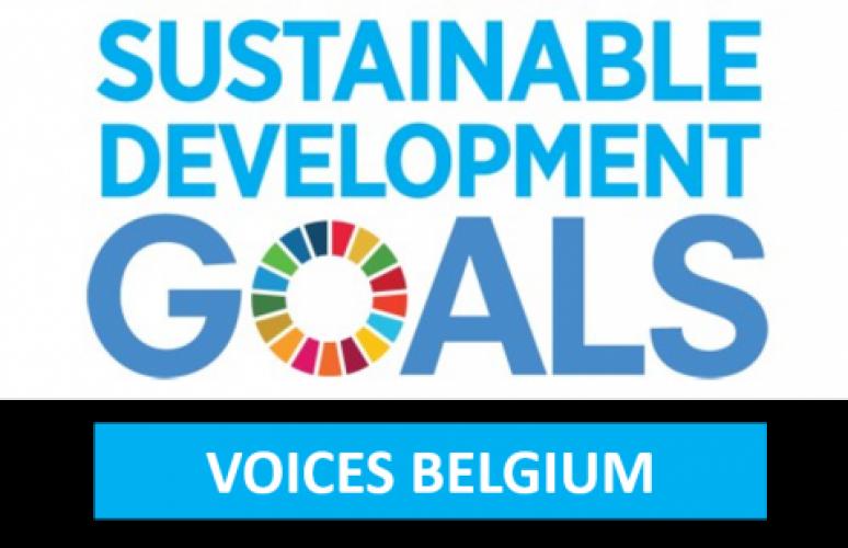 Wat zijn de SDG's?